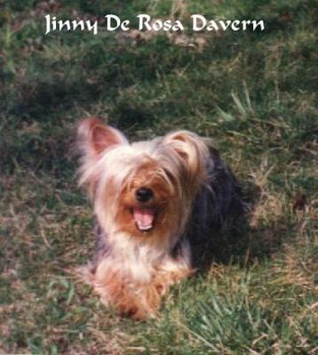 JINNY DE ROSA DAVERN